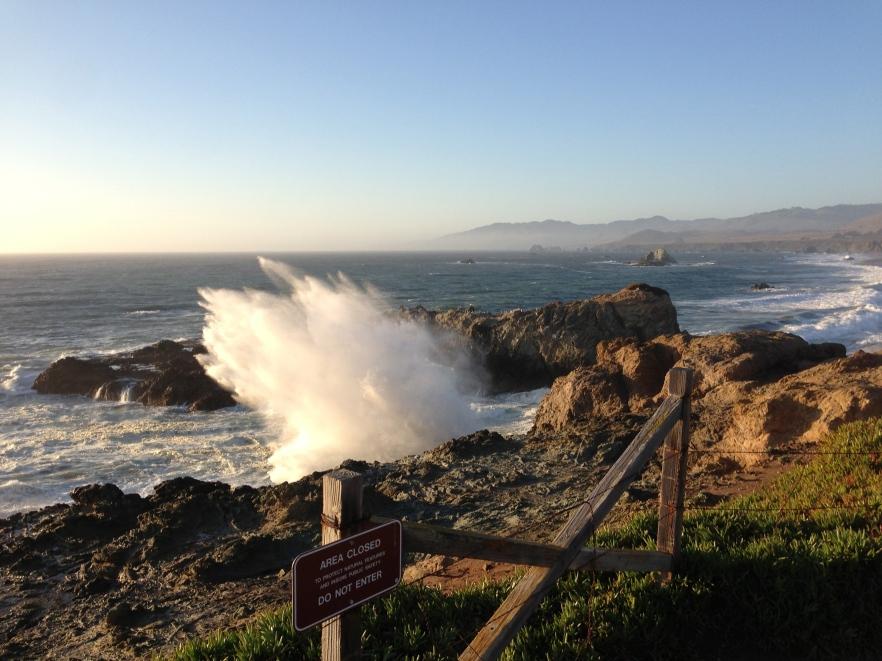 // Bodega Bay, CA